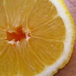 クエン酸の効果と上手な摂取の仕方